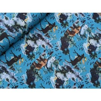 põder ja karu sinisel_1.jpg