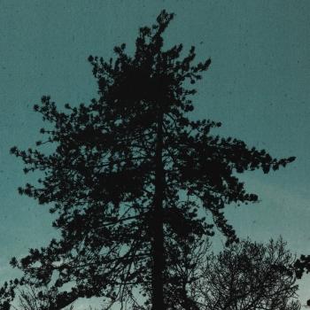 petrooleumpuud.jpg