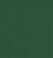Cotton jersey dark green  (210g) GOTS