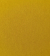 Cotton jersey ocher yellow (200g) GOTS