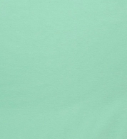 Brushed french terry mint green (250g)