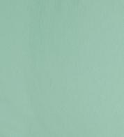 Dressikangas mündiroheline (250g)