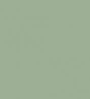 Dressikangas sage roheline (250g)