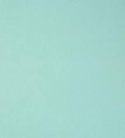 French terry bluish mintgreen (240g) GOTS
