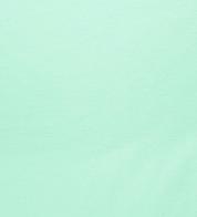 Soonik pastelne mündiroheline (265g)