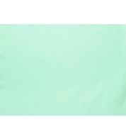 pastelne mündiroheline2.jpg